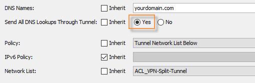 ASA Anyconnect DNS lookup setting